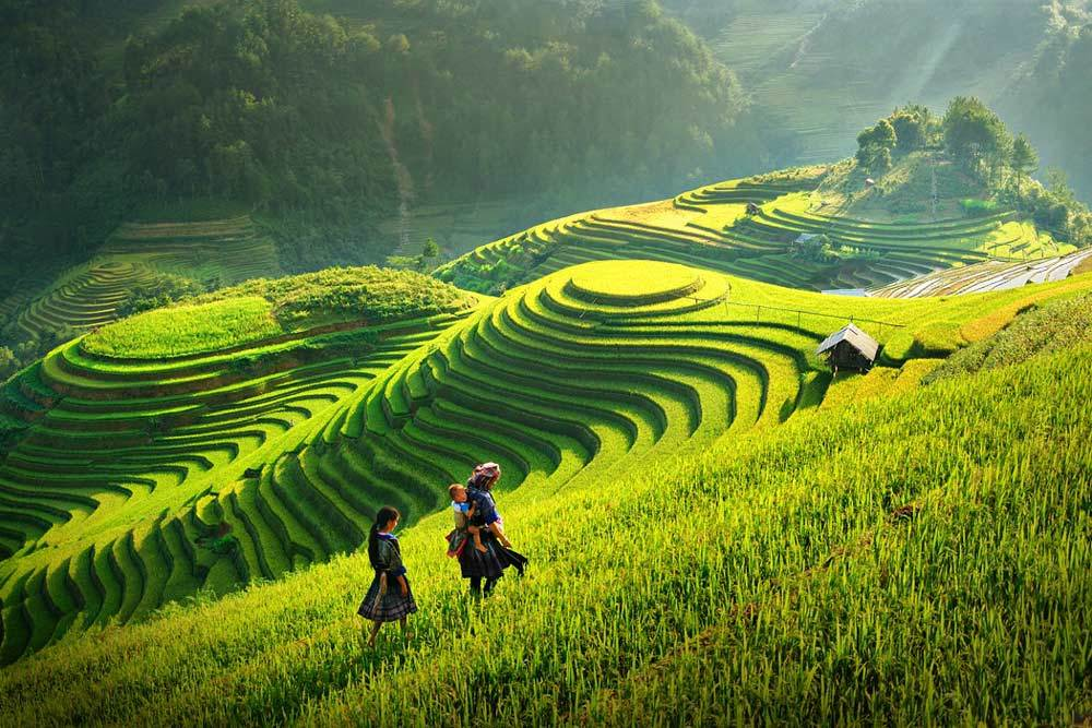 6 days Hanoi- Sapa (by bus high way) – Halong on overnight Cruise